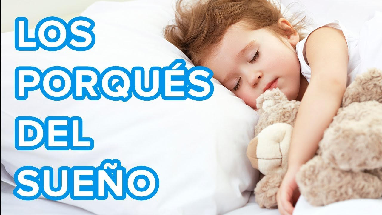 Los porqués del sueño | Respuestas a las preguntas de los niños ????