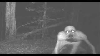 Paranormal Olaylar - Korkunç Ormanda Uzaylı Peşinde - Rake Bölüm 1