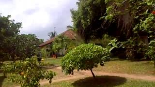 preview picture of video 'Compound of Diani Beach cottages for short and long term letting'