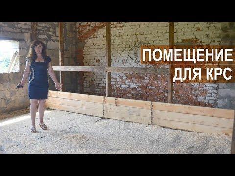 Помещение на 10 голов молочного КРС в фермерском хозяйстве Татьяны Жуковой. Содержание коров