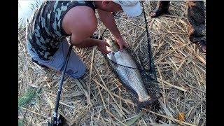Все о рыбалка на байкале летом 2020