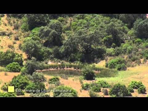 Der Große Wanderweg Málagas. Etappe 26: Jimera de Líbar – Benalauría (Deutsch)