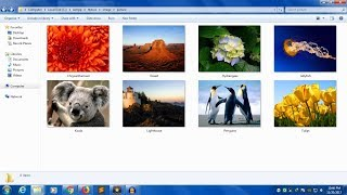 PHP/MYSQL- How to upload Image in Folder and Save Path in Database