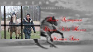 Bruce Springsteen - Chasin' Wild Horses (Lyrics)