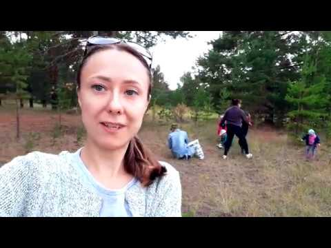 Vlog:Именная подвеска для Киви.Поехали в лес.Красотища.