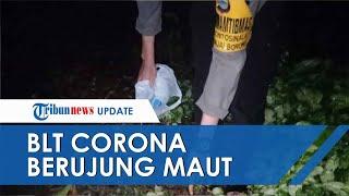 Fakta Pembagian BLT Corona di Sinjai Berujung Maut, Diawali Adu Mulut Istri Pelaku dengan Korban