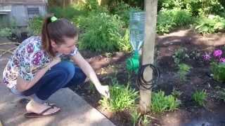 Автомат полива Дождь-3Б (питание от батареек) от компании РИАЛ - видео 2