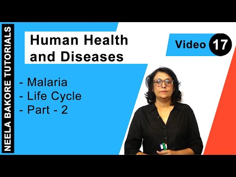 Férgekkel járó betegségek neve