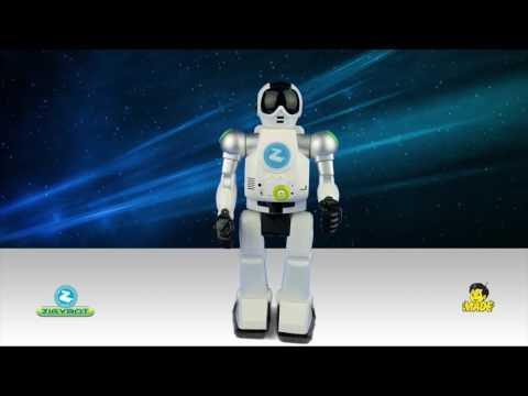 Binomo opcijas video pārskati
