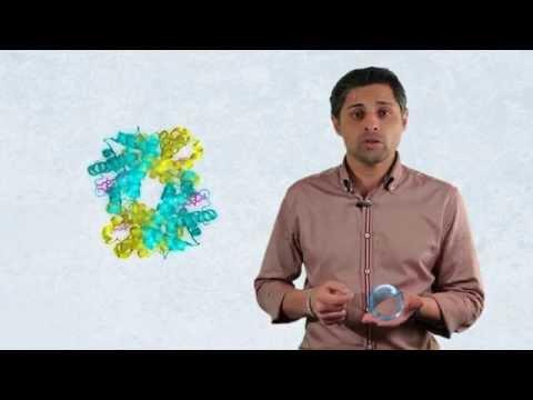 Limón y huevo de la diabetes tipo 2