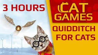 CAT GAMES - 3 HOURS Quidditch for Cats! (VIDEOS FOR CATS TO WATCH) 4K 60FPS