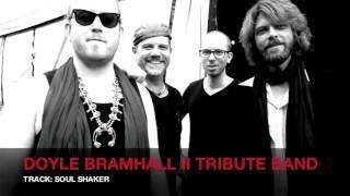 Doyle Bramhall II Tribute Band - Soul Shaker