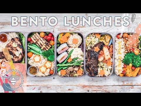 BENTO BOX Lunches for back 2 school 🍱 #BuzyBeez | HONEYSUCKLE