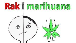 Czy marihuana może pomóc zwalczyć raka?
