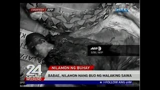 Nilamon nang buhay ng malaking sawa ang isang babae sa Indonesia.  24 Oras is GMA Network's flagship newscast, anchored by Mike Enriquez, Mel Tiangco and Vicky Morales. It airs on GMA-7 Mondays to Fridays at 6:30 PM (PHL Time) and on weekends at 5:30 PM. For more videos from 24 Oras, visit http://www.gmanetwork.com/24oras.  Subscribe to the GMA News and Public Affairs channel: https://www.youtube.com/user/gmanews  Visit the GMA News and Public Affairs Portal: http://www.gmanews.tv  Connect with us on: Facebook: http://www.facebook.com/gmanews Twitter: http://www.twitter.com/gmanews