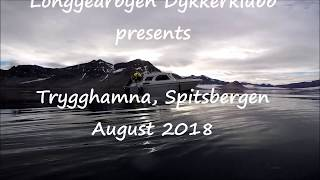 Shipwreck Figaro 1879-1908. Trygghamna, Spitsbergen
