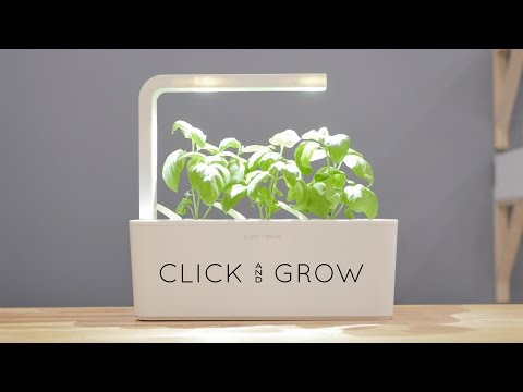 mini tomato plant pods click grow. Black Bedroom Furniture Sets. Home Design Ideas