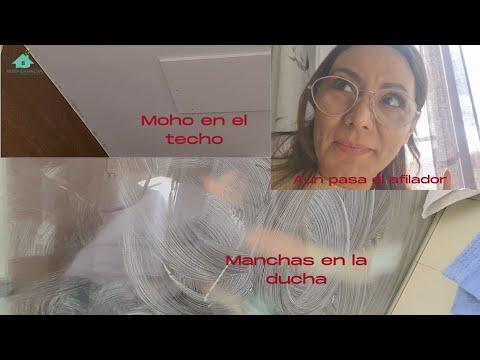 Cómo Limpia El Moho Del Techo y La Manchas De La Ducha