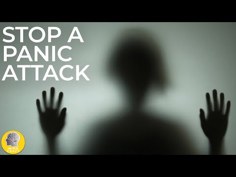 SURVIVAL: HOW TO STOP A PANIC ATTACK