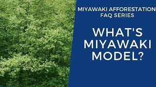 What's Miyawaki Model?