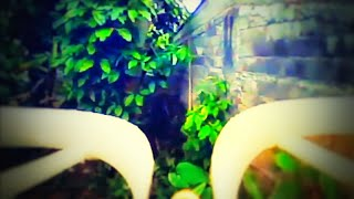 Fpv Whoop Mini Forest