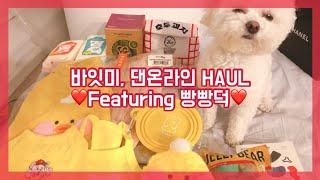 [바잇미/댄온라인] 강아지 용품 하울🐶   빵빵덕   Korean Dog Clothing & Supplies Haul