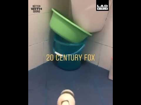 20th Century Fox Bucket!