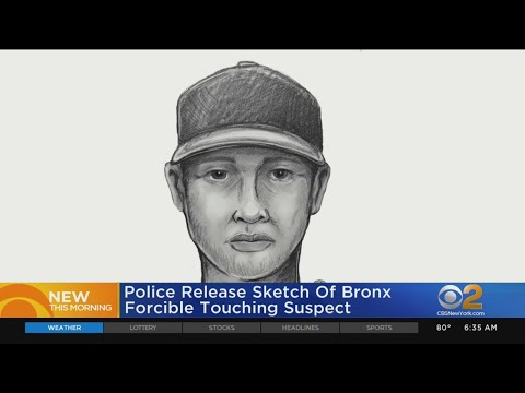 Man Accused Of Forcibly Touching Girls In The Bronx