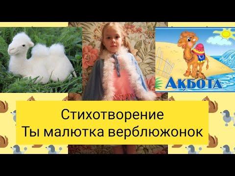 Малютка верблюжонок Стихотворение для детей