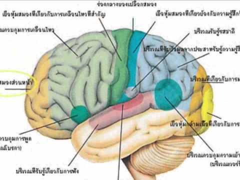 ผู้ป่วย neurodermatitis