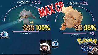 다크펫  - (포켓몬스터) - 포켓몬GO ★스뎅뎅 SSS100% 다크펫 / SS98% 윈디 강화 Banette & Arcanine Max CP [POKEMON GO]