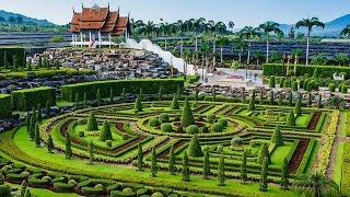 Экскурсия в Паттайе. Тропический сад Нонг Нуч. Паттайя 2017