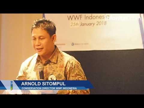 WWF Indonesia Untuk Konsevasi Hiu dan Mamalia Laut