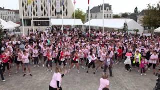 preview picture of video 'Les événements 2013 de la Ville de Parthenay'