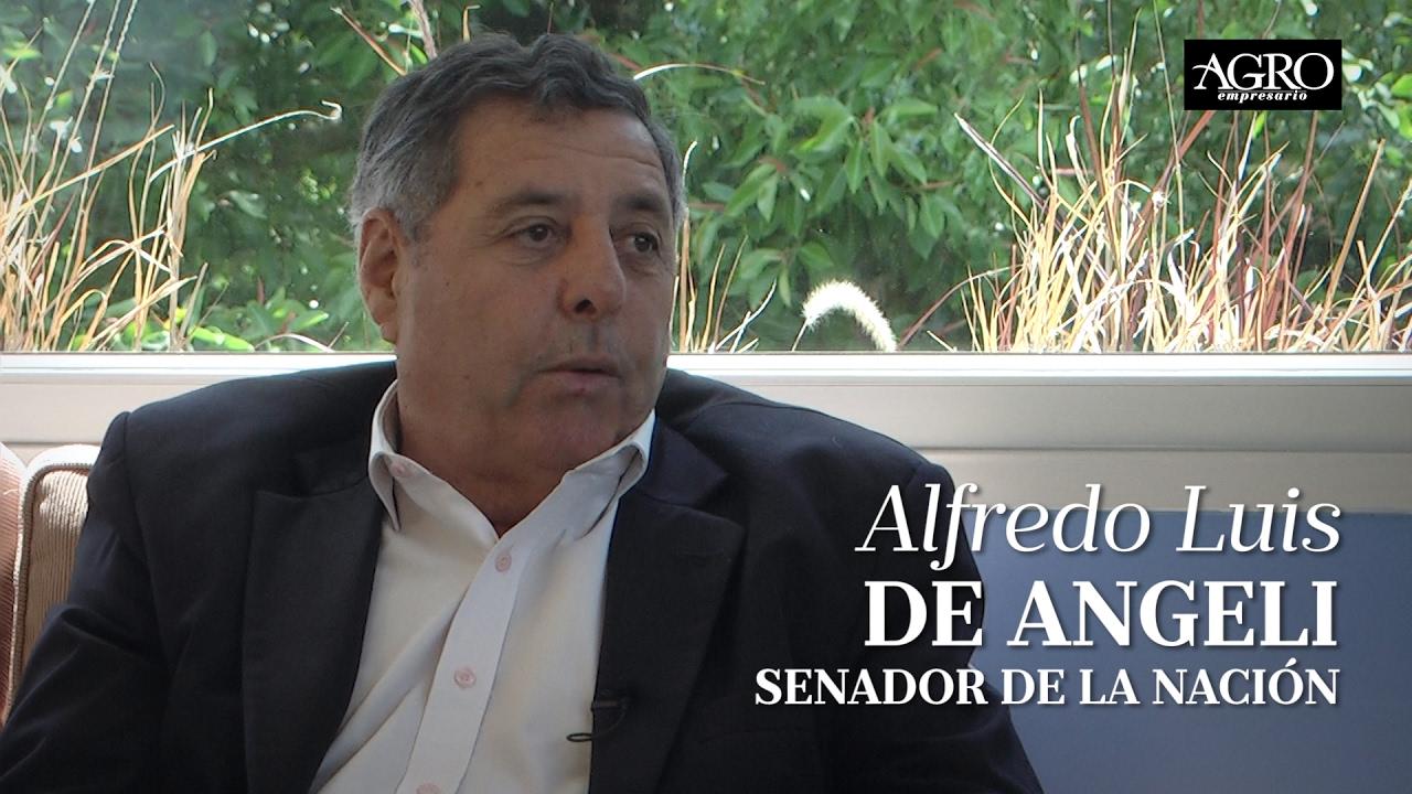 Alfredo Luis De Angeli - Senador de la Nación