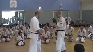 Sensei Artur Hovannisian - Kumite combination #1