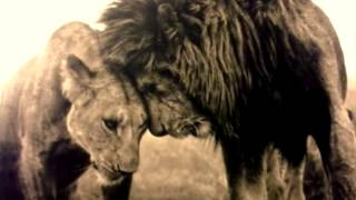 Abraham Hicks - Get Rid Of Your Anger And Feel An Abundance Of Love