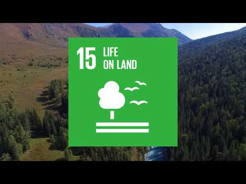 "Transbondary Biosphere Reserve ""Great Altai"" for UNESCO (2018)"