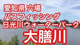 大膳川穴場バス釣りスポット愛知県日光川ウォーターパーク