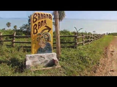 Visit Banana Bank - Belize Resort