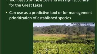 Webinar: Science Behind Aquatic Invasive Plants: Organisms in Trade Webinar Series