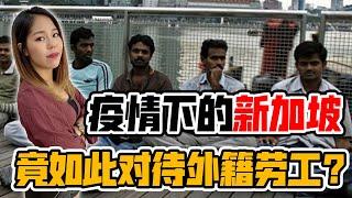 新冠病毒,暴露新加坡竟如此对待外籍劳工!别的国家根本比不了?难怪美国赢不了新加坡!原因竟是这样!【政经10分钟 EP105】