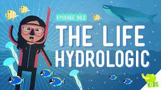 The Life Hydrologic: Crash Course Kids #30.2