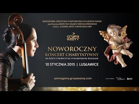 Noworoczny Koncert Charytatywny Grupy Azoty, 2015 - zdjęcie