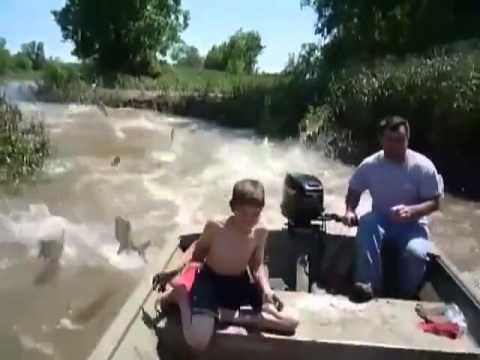 Bắt cá chưa bao giờ dễ đến thế