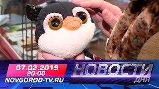 07.02.2019 Новости дня 20:00