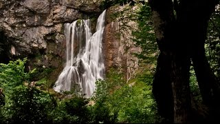 Красивая природа Абхазии / Beautiful nature of Abkhazia