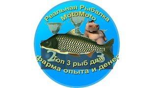 Как пользоваться эхолотом в реальной рыбалке