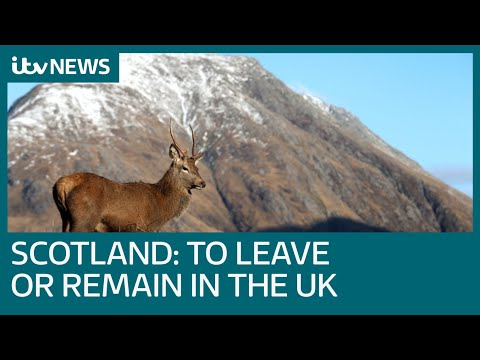 Why the General Election in Scotland is about leaving or remaining in the UK | ITV News