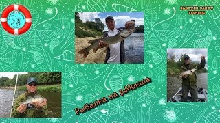 Рязанская область рыбалка в спасском районе